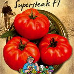 Tomaat Supersteak F1