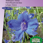 Ridderspoor Chinese, Blue Diamonds (Delphinium)