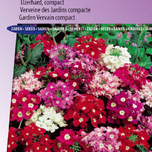 Verbena Ideal Florist mix