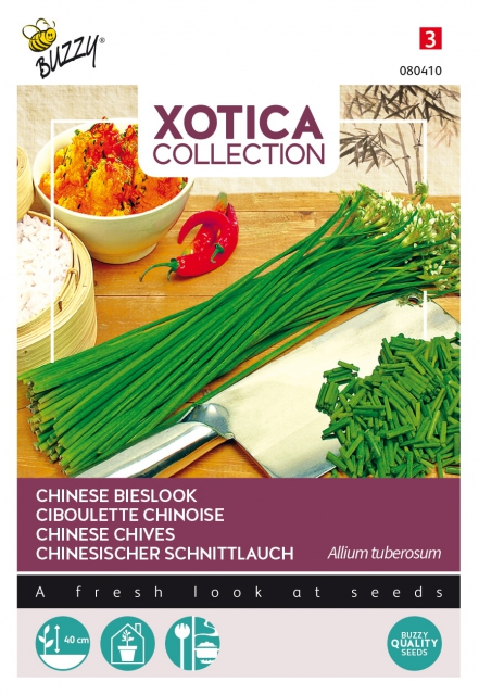 Chinese Bieslook - Xotica Collection
