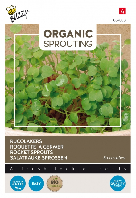 Organic Sprouting Rucola Kers - Buzzy
