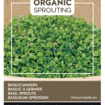 Organic Sprouting Basilicum Kers - Buzzy