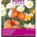 Poppies of the world - Papaver IJslandse