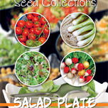Zaden Collectie Salad Plate (4in1)