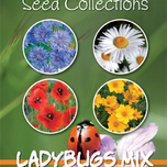 Zaden Collectie Ladybugs Mix (4in1)
