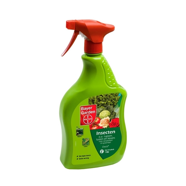Desect spray Insecticide 1 l - SBM