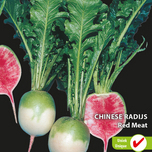 Radijs Chinese Red Meat (Raphanus Sativus)