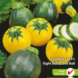 Courgette Eight Ball F1